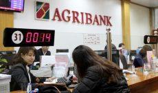 Sáp nhập 2 công ty vào ngân hàng, Agribank còn đầu tư vốn vào những công ty nào?
