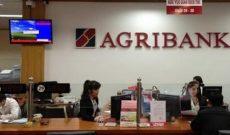 Agribank trả lương trung bình mỗi nhân viên gần 20 triệu đồng/tháng