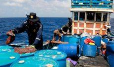 Úc giam giữ 13 ngư dân Việt đánh bắt hải sâm trái phép