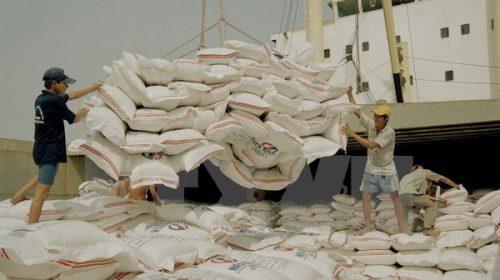 Việt Nam sẽ cung cấp 1 triệu tấn gạo cho Bangladesh mỗi năm