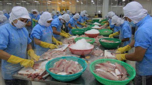 Xuất khẩu cá tra sang Ảrập Xêút nhiều triển vọng