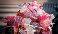 Sự lựa chọn nào thay thế cho nhựa?