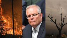 """Thủ tướng Scott Morrison kêu gọi thành lập Ủy ban hoàng gia về các vụ cháy rừng trong """"mùa hè đen tối"""""""