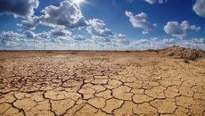 Úc xem xét hoãn thuế cho nông dân bị ảnh hưởng bởi hạn hán