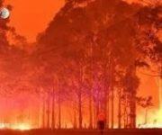 Khói bụi từ cháy rừng ở Úc gây thiệt hại 1,95 tỷ AUD về y tế