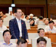 Đại biểu Trần Hoàng Ngân: Tăng trưởng GDP năm 2017 sẽ đạt 6,7% nếu…