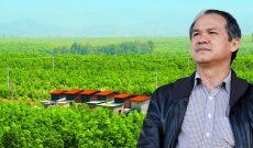 Bách Hoá Xanh sẽ mua toàn bộ trái cây của bầu Đức nếu thị trường có nhu cầu