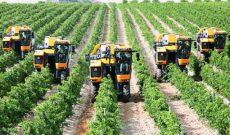 Đề xuất tạo điều kiện thuận lợi cho các doanh nghiệp đầu tư vào nông nghiệp