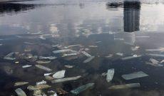 """Chàng trai Úc chụp ảnh bao cao su nổi kín một góc hồ Linh Đàm: """"Nhiều người mắng tôi là câu like"""""""