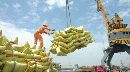 Tiếp tục gia hạn IPO Tổng công ty Lương thực miền Nam