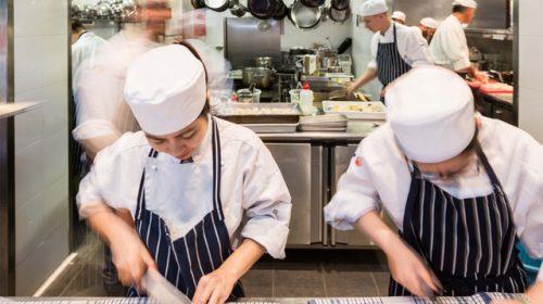 Ngành Hospitality: Cơ hội thực tập hấp dẫn tại trường William Blue – Úc