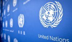 Ai cũng từng nghe nói đến Liên hợp quốc, nhưng có bao nhiêu người thực sự biết tổ chức này làm gì?