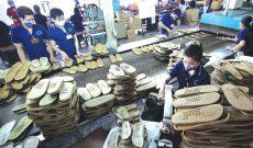 Ngành da giày: Bàn việc phát triển bền vững