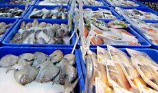 Thủy sản quyết thu về 9 tỷ USD giá trị xuất khẩu 4 năm tới