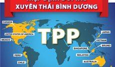 Có hay không TPP, Việt Nam vẫn cải cách môi trường kinh doanh